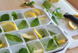 Limon nanəli buz qəlibi