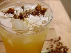İhlamurlu limonad