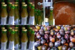 mineralnı su şüşələrində meyvə suyu