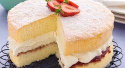 tort üçün biskivit